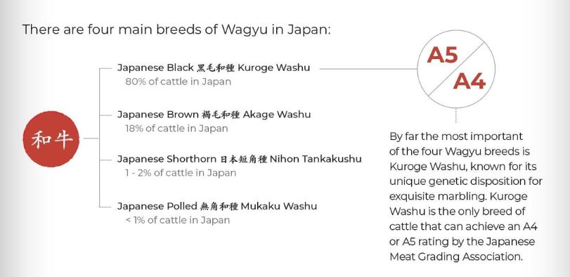 Four main breeds of Wagyu. Japanese black, brown, shorthorn and polled. Kuroge Washu is the most important.