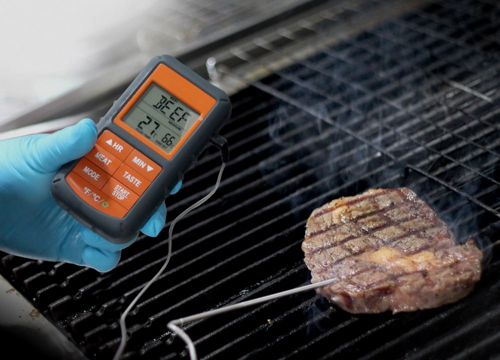 Best Meat Thermometer For Steak