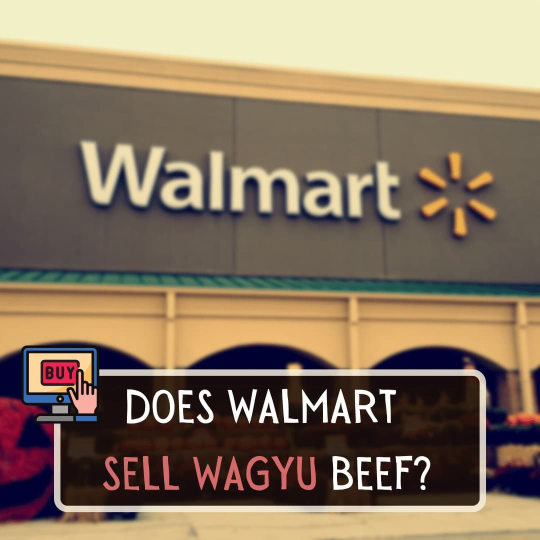 Does Walmart sell Wagyu beef Yes, Walmart does sell Wagyu beef in the form of Wagyu beef patties, Wagyu Strip Steak, and also Wagyu Beef Ribeye Steak. However, this will be subject to availability and Wagyu may not be offered in every store across the country. You may be limited to what sorts of Wagyu cuts or products you can buy at Walmart, or they may not even sell them at your local store. If you're looking for some premium cuts, then one of the best places to find some amazing ragu is at CrowdCow, we'd recommend the Filet Mignon Wagyu which is so unbelievably juicy and is such a treat to enjoy on the weekend. Where does Walmart get their Wagyu beef Most of Walmart's Wagyu beef products are labeled as 'American Wagyu' so presumably, their meat is coming from American cattle farms and not Japan. The prices of the Walmart Wagyu products are notably not as high as traditional Japanese Wagyu, which is an immediate clue that the Wagyu is not genuine Wagyu from Japan. Walmart's Wagyu beef will be from Wagyu beef cattle but it will have been raised and cut on US farms. The more inexpensive Wagyu products will not be premium cuts hence why the price is so much more affordable than Japanese Wagyu. Is Walmart Wagyu real No, Walmart Wagyu is not real Japanese Wagyu. They breed Wagyu cattle with American cattle as Wagyu only needs around 46% Wagyu genetics to be sold as Wagyu in a retail store. So even though you're getting a good deal on your American Wagyu, you'll need to bear in mind that it is only really half Wagyu and half Angus or whatever other cattle they use to breed with. So they may be using real Wagyu cattle to breed with American cattle, the chances of the Walmart Wagyu being 100% real is very slim. If you want to be guaranteed incredibly quality American Wagyu beef, then one of the best places to go is Snake River Farms, they have a wide selection of American Wagyu cuts and they're available in a variety of portion sizes to suit whatever occasion you're cookin